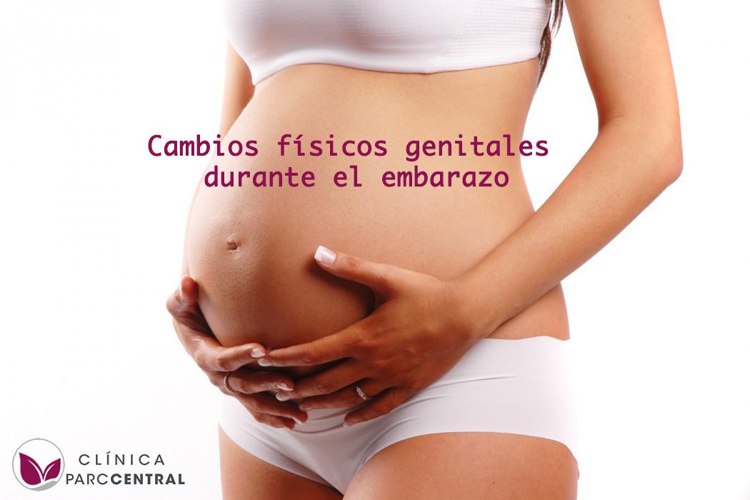 Los cambios físicos genitales durante el embarazo
