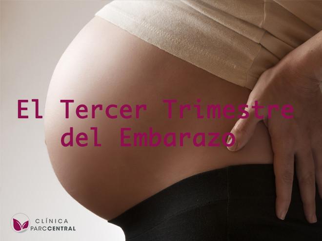 el tercer trimestre del embarazo